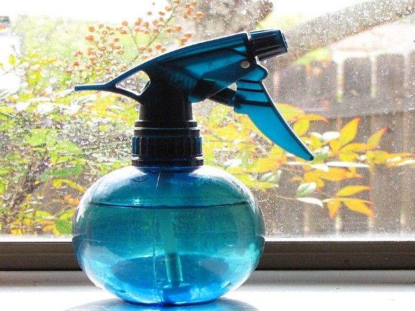 8. Пчелы, осы, муравьи тревожат твой покой? Распыли немного водки на насекомых, налив спиртное в распылитель.