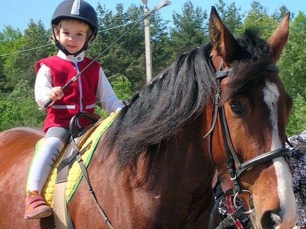 Конная прогулка. Хорошо провести время и подышать свежим воздухом можно во время конной прогулки. Именинник и гости будут рады общению с милыми животными.