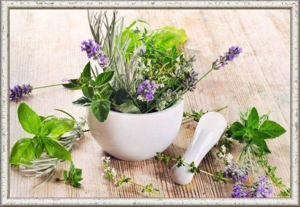18. Чтобы травы отдали больше аромата и сока, их нужно растолочь в ступке и сбрызнуть оливковым маслом.
