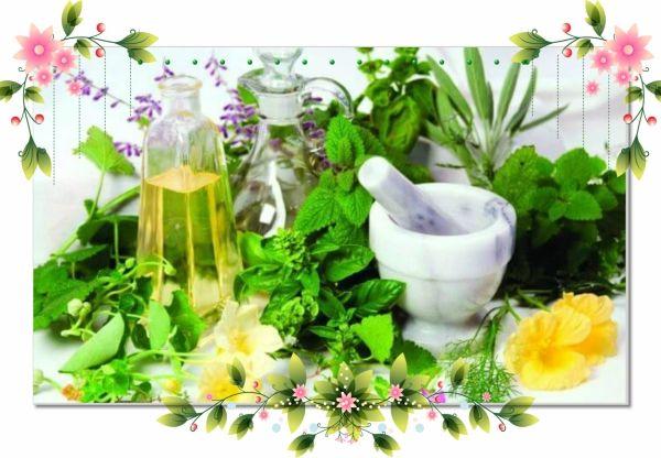 15. Травяная маска. Возьмите в равных пропорциях свежие или высушенные листья кориандра, мяты перечной и лимонной травы. Смешайте, залейте кипятком и оставьте до полного остывания. Затем нанесите травяную смесь на лицо на 20 минут, после чего смойте холодной водой.