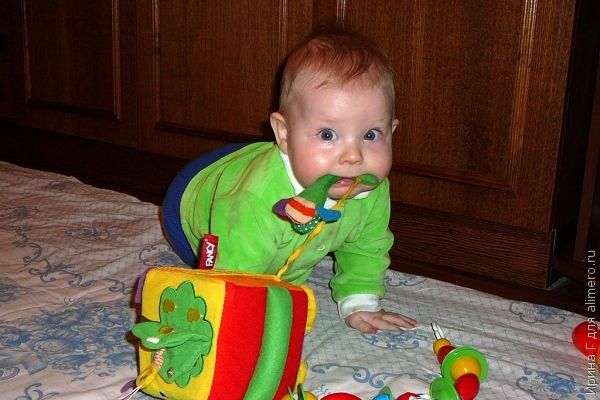 Ребенок просит взрослую еду. Что делать?