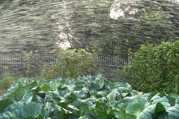 """Наши летние """"мокрые"""" игры"""