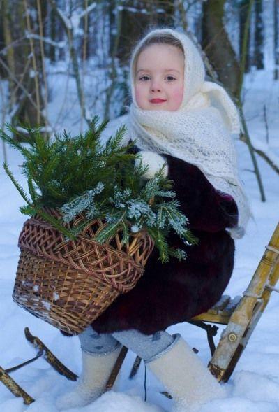 Лес, корзинка, санки, еловые ветки - на фото зимнее и предпраздничное настроение.