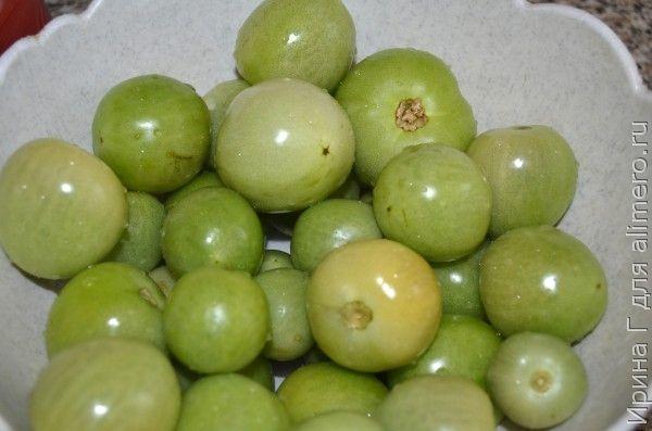 зеленые маринованные помидоры