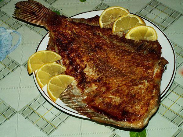 Некоторые виды рыб. Камбала, путассу, речной окунь, треска, судак, хек, щука, корюшка. Их калорийность от 80 до 100 ккал.