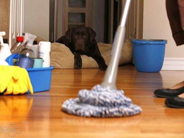 Повысить физическую активность на бытовом уровне. К примеру, мыть пол не шваброй, а самой везде лазить. Лишний раз протереть пыль. Выполнять домашние дела более ритмично, чтоб потратить больше энергии.