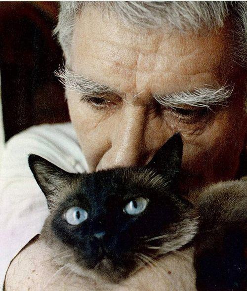 Когда Армену Джигарханяну по семейным обстоятельствам пришлось расстаться с голубоглазым тайским котом, он ежедневно звонил из России в США, чтобы узнать, как Фил провел день. В одном из интервью Джигарханян говорит: «Он снится мне каждый день. Он часть меня, даже часть моего одиночества». Кота Фила, умершего в 18 лет, Армен Борисович назвал своей «последней, самой сильной любовью».