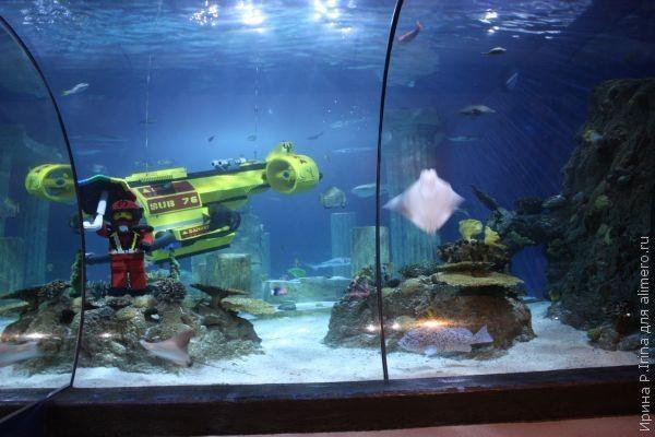 Лего в аквариуме