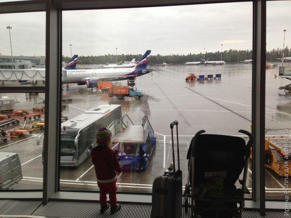 Небо, девочка, самолет