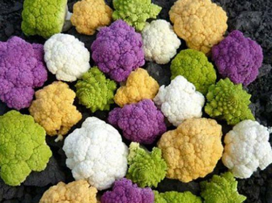Витамин С, который содержится в крестоцветных овощах (цветная капуста, редис), борется с раком и помогает в выработке коллагена и эластина.