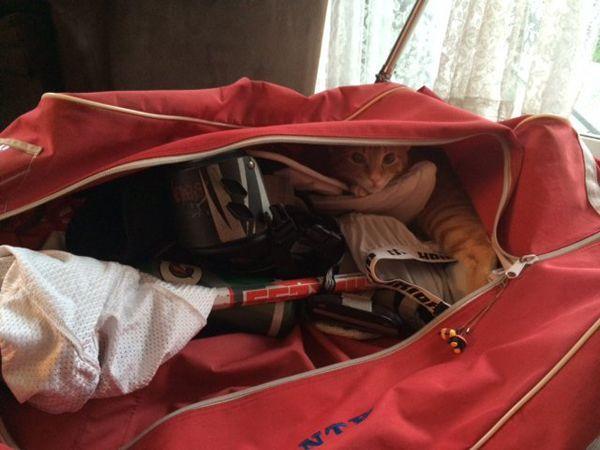 Запах спортивной сумки и шкафчика для переодевания в спортзале — конечно, не из приятных. Если в сумке у тебя будут несколько пакетиков силикагеля, то в любом случае запах хоть чуть-чуть, но улетучится.