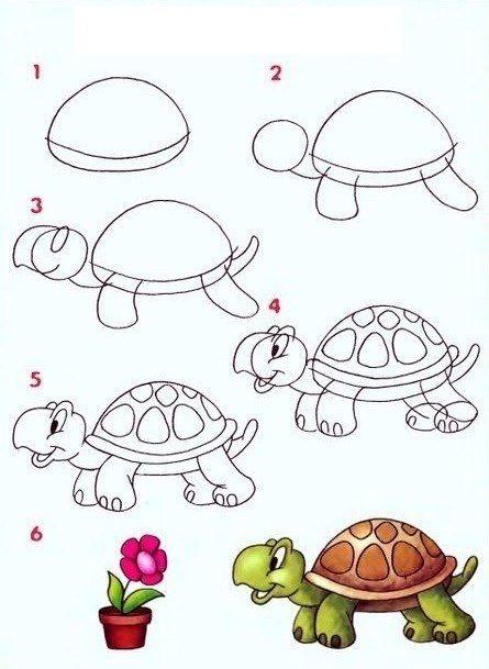 Черепашка –символ мудрости и знаний. Вот такую очаровашку можно нарисовать, если начать рисование с панциря.