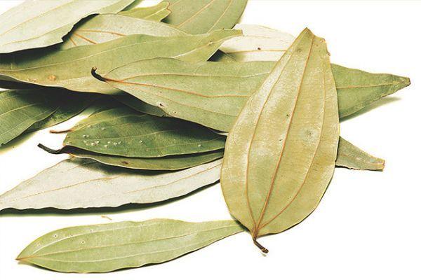 Лавровый лист является отличным помощником в борьбе с различными насекомыми, появляющимися в крупах.