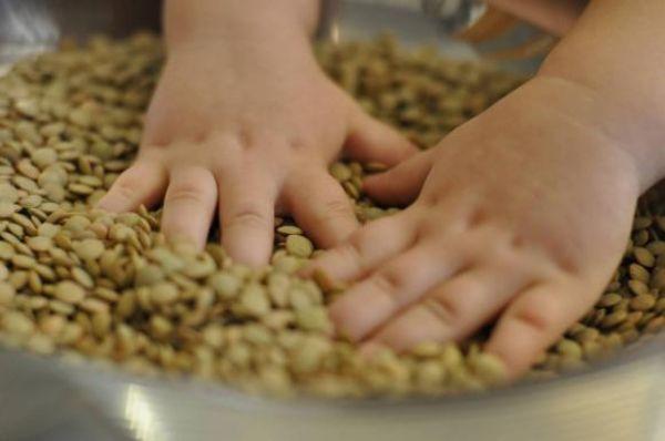 Помогать перебирать крупу, фасоль или любые другие мелкие продукты питания.