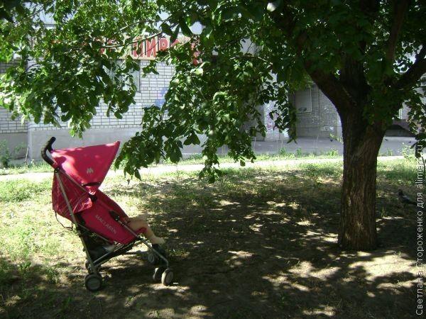 коляска детская фото