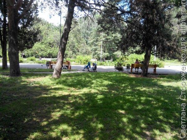 Колясочки в парке