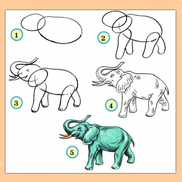 Научить рисовать ребёнка карандашом помогут специальные альбомы, в которых будет размещаться комплекс заданий. Сначала это обычные соединения точек линиями, затем рисование фигур и после этого более конкретные задачи по рисованию предметов.