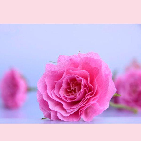 Эти розы немного напоминают пионы и гвоздики. Для их создания вам понадобится: гофрированная бумага розового и зеленого цветов, палочка для стебля, ножницы, клей, проволока.