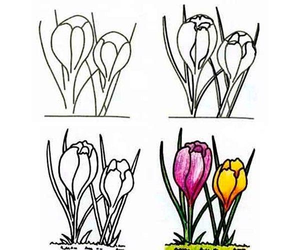 Рисуем цветы, мастер-классы.