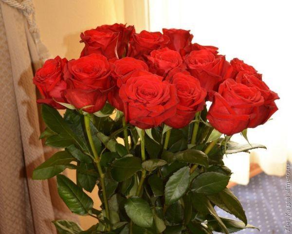 Что я дарю своим близким на День святого Валентина