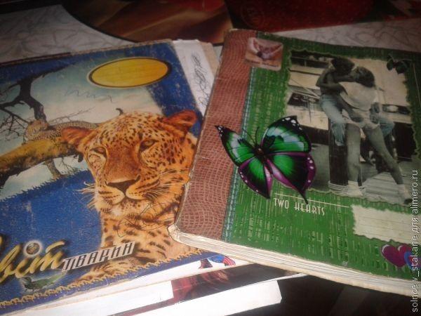 Жизнь в дневниках