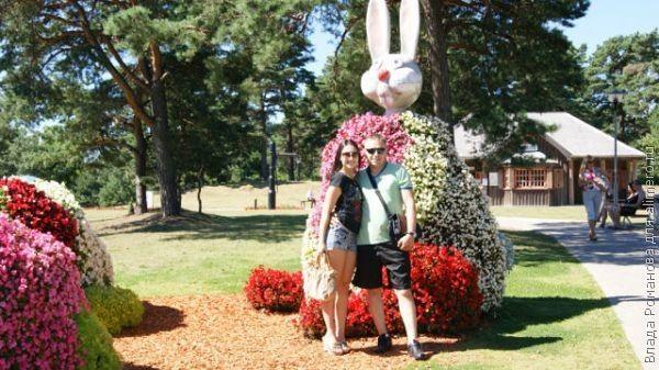Семья: переход от супружеской жизни к родительской