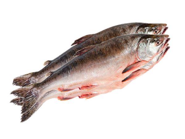 Если вы хотите, чтобы рыба, которую вы достали из морозильной камеры, имела свежий вкус, как будто её только что поймали, попробуйте этот трюк. Положите рыбу для размораживания в миску с молоком. Молоко придаст рыбе отличный вкус.