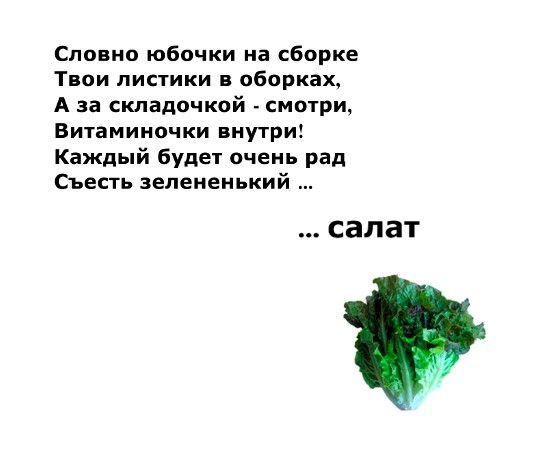 Загадки о фруктах, ягодах и овощах.