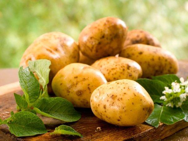 Для того, чтобы хорошо очищалась кожура с молодого картофеля, его перед чисткой нужно положить в соленую холодную воду.
