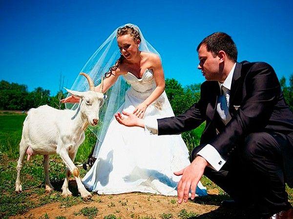Оригинальные идеи свадебной фотосессии