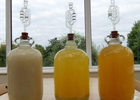 15. Вино. Сок дыни — 10 л, дрожжи — 200 г, сахар — 4 кг. Из дынь выжать сок, слить в стеклянную емкость и добавить сахар и дрожжи, растворенные в воде. Сделать водяной затвор, герметично закрепленный шланг опустить в емкость с водой или надеть резиновую перчатку на горлышко. Когда процесс брожения полностью завершится, вино профильтровать и попробовать на вкус. При необходимости добавить еще сахар.
