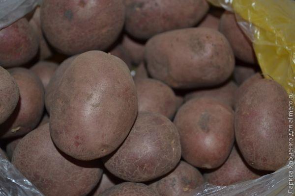 рецепт картошки