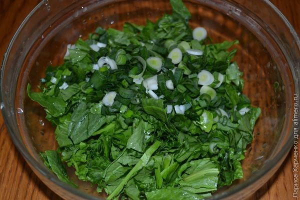 салат со щавелем
