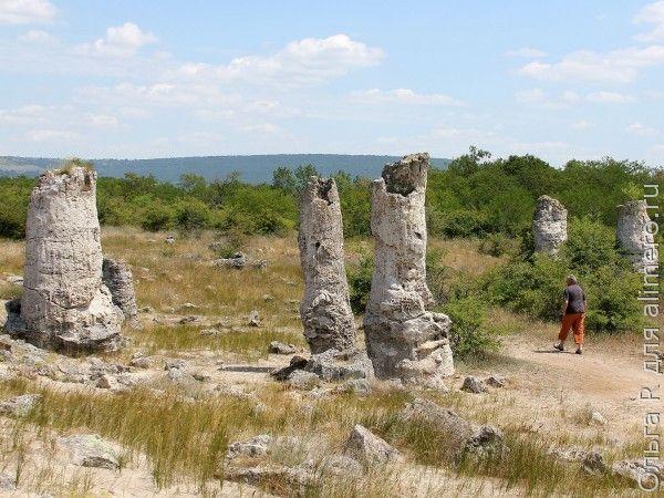 Каменный лес, Болгария