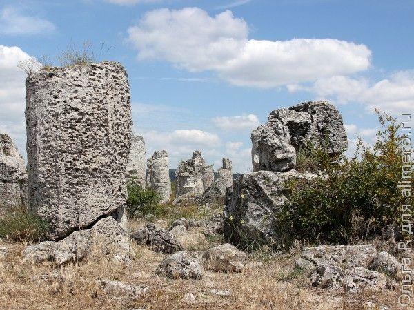 Каменный лес Болгария