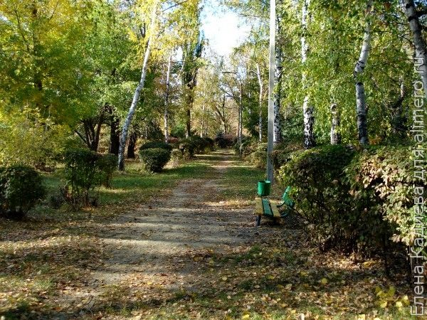 Парк в Миллерово