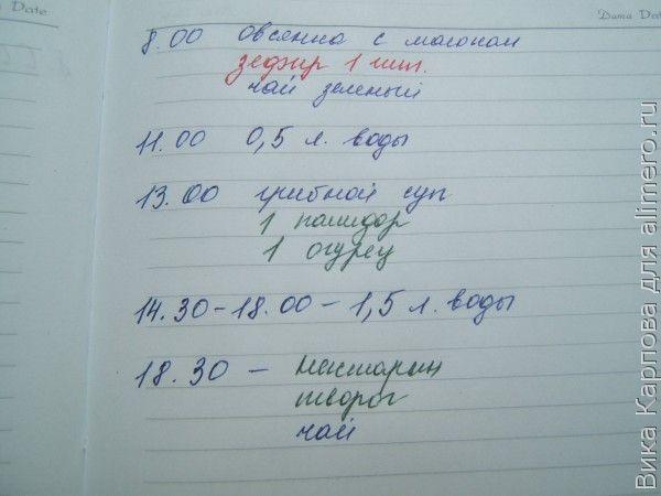 дневник питания