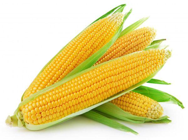 Кукуруза. В ней содержатся вещества, выводящие излишки холестерина. Так что если не удержались и съели что-то жирненькое, кукуруза не позволит жиру осесть в вашем организме!